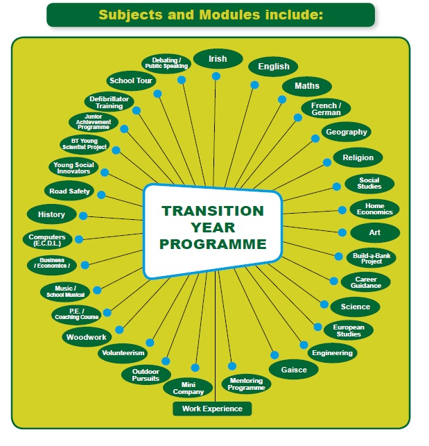 Davitt College Transition Year Programme