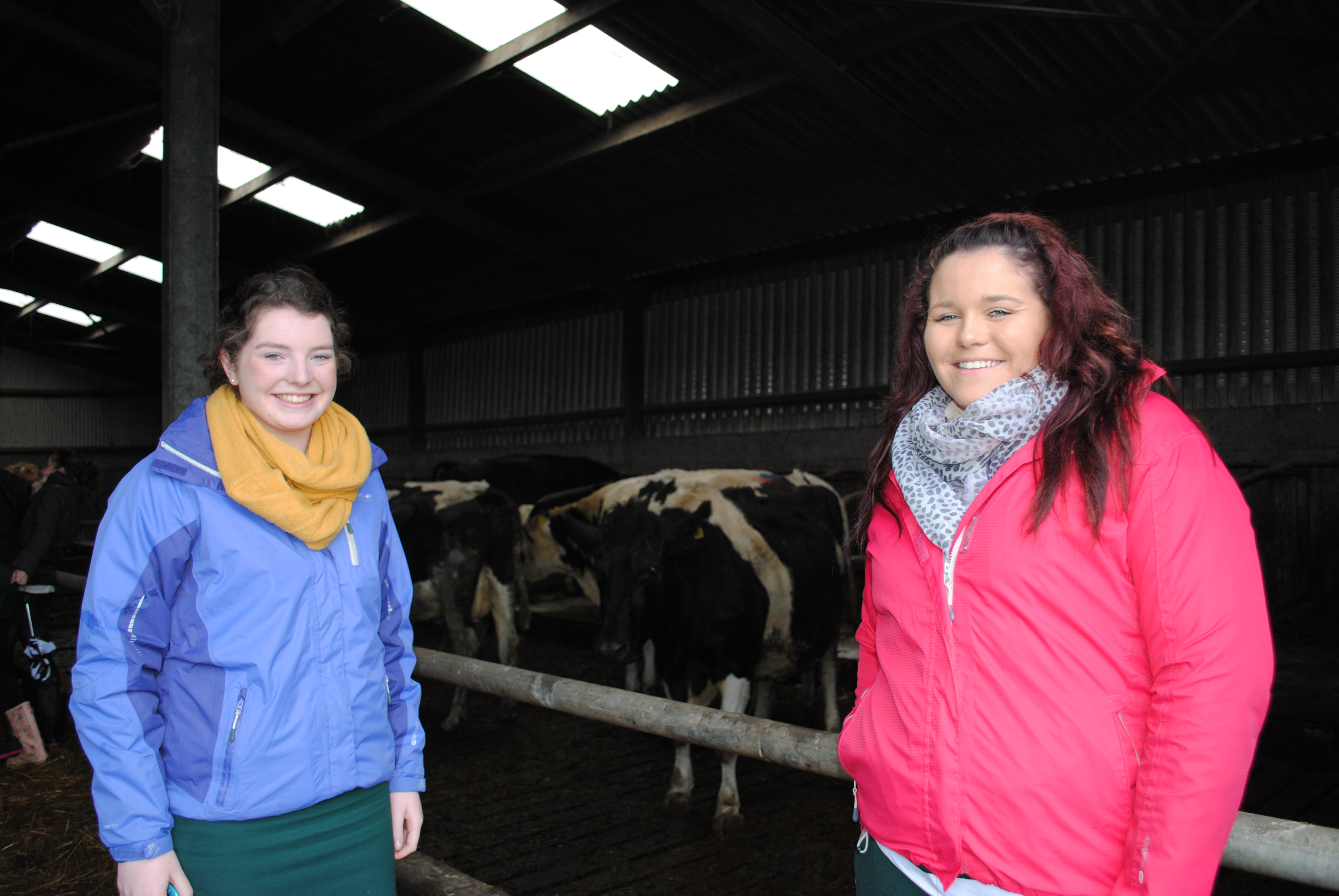 Davitt College students Hannah Mulchrone and Ciara Forkan on a Leaving Certificate Agricultural Science Farm Visit to Barretts Dairy Farm, Breaffy.