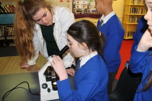Students from Scoil Raifteirí, Castlebar examine plant cells during The Science & Technology Fair 2016 at Davitt College.